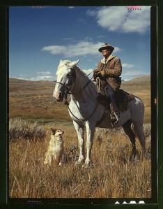 Shepherd with horse